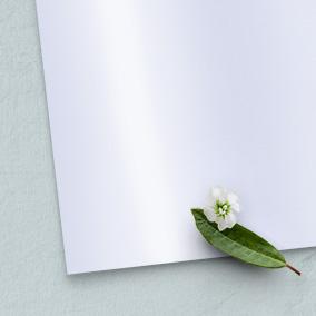 Hochglanzpapier